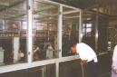 催化燃烧设备厂家